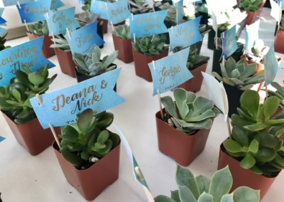 Watercolor Succulent Escort Cards