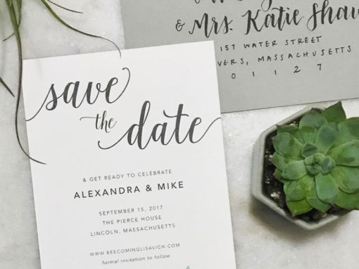Alexandra & Michael Save the Date